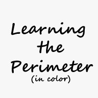 Perimeter in color
