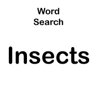 word search about insects