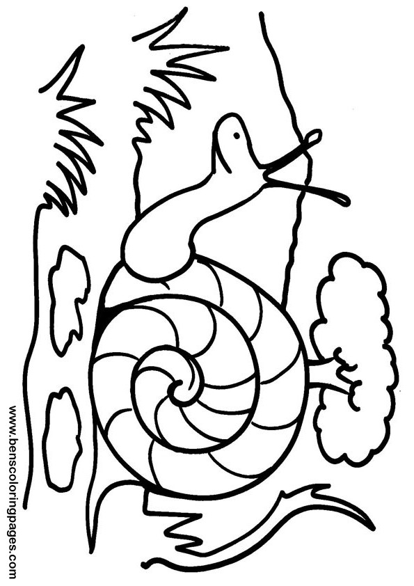 Printable snail coloring sheet