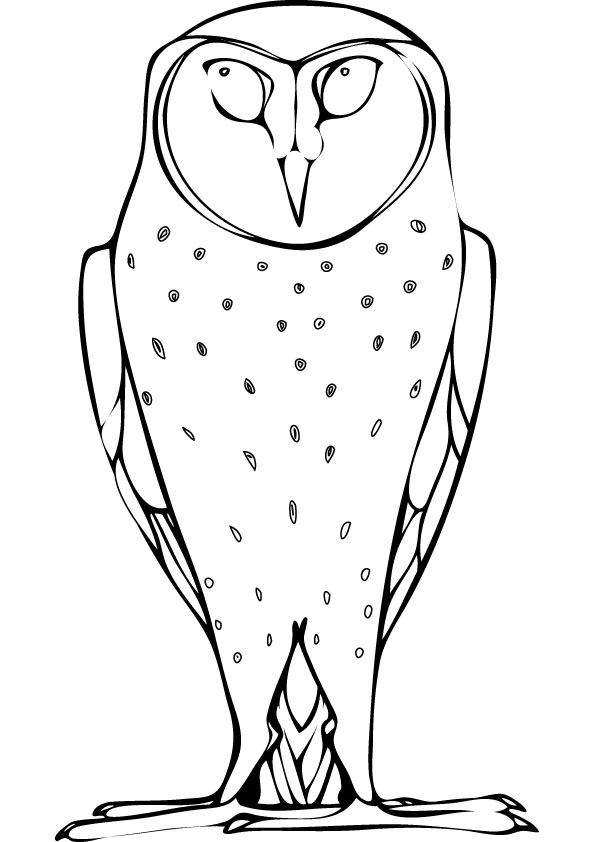 Barn owl printable coloring pages
