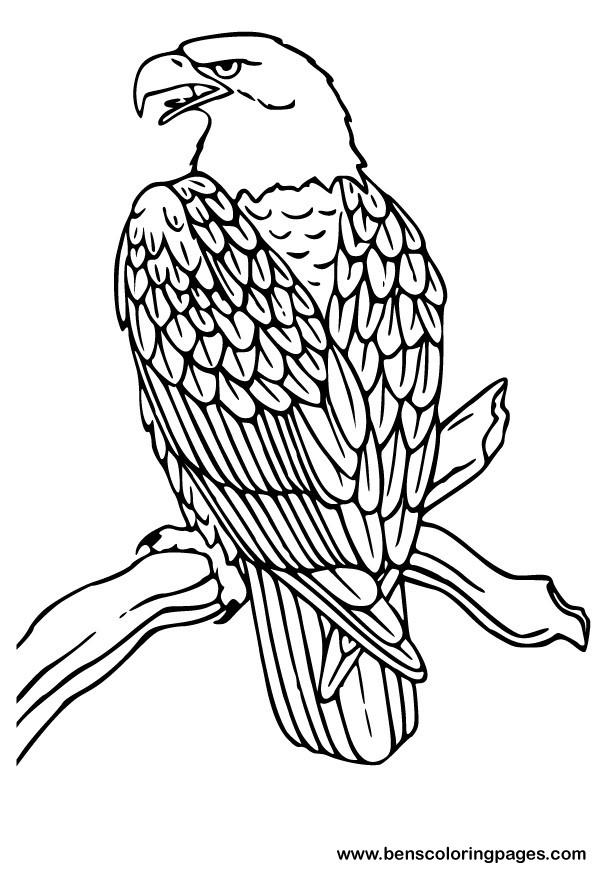 free coloring pages of african fish eagle