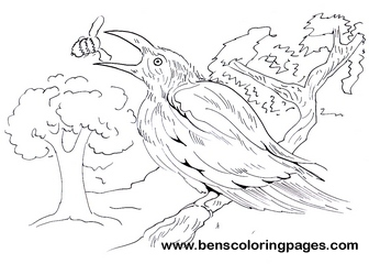 beeeater coloring for kids