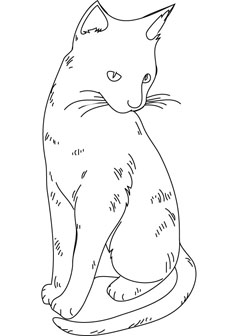 free cat drawing page