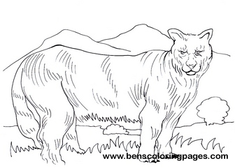 coloring pages of cougars - photo#25