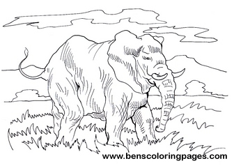 elephant coloring for kids