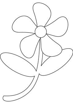 flower drawing book