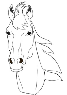 horse face coloring drawing