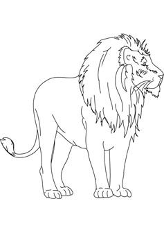 Kleurplaat Mandala Wilde Dieren Baby Lion Coloring Drawing