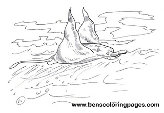 manta ray coloring pages - photo#25