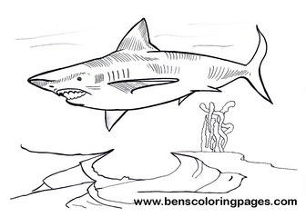 Megalodon Free Coloring Page - Megalodon-coloring-pages-to-print