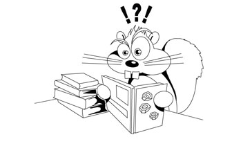 Squirrel going nuts coloring pages