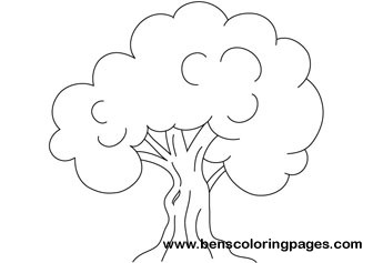 Oak Tree Coloring Pages Oak Tree Coloring Page