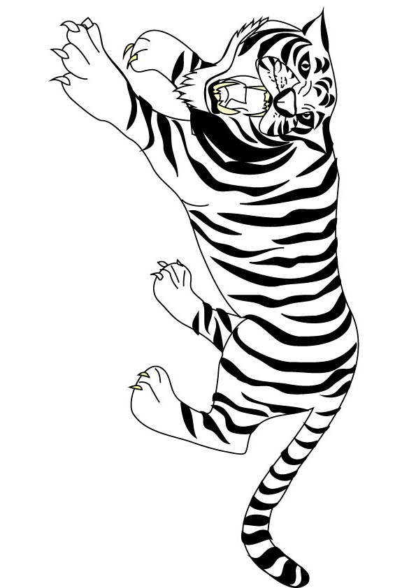 crouch tiger colouring picture