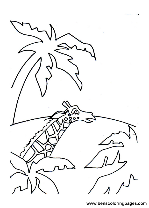 desert oasis coloring pages - photo#5